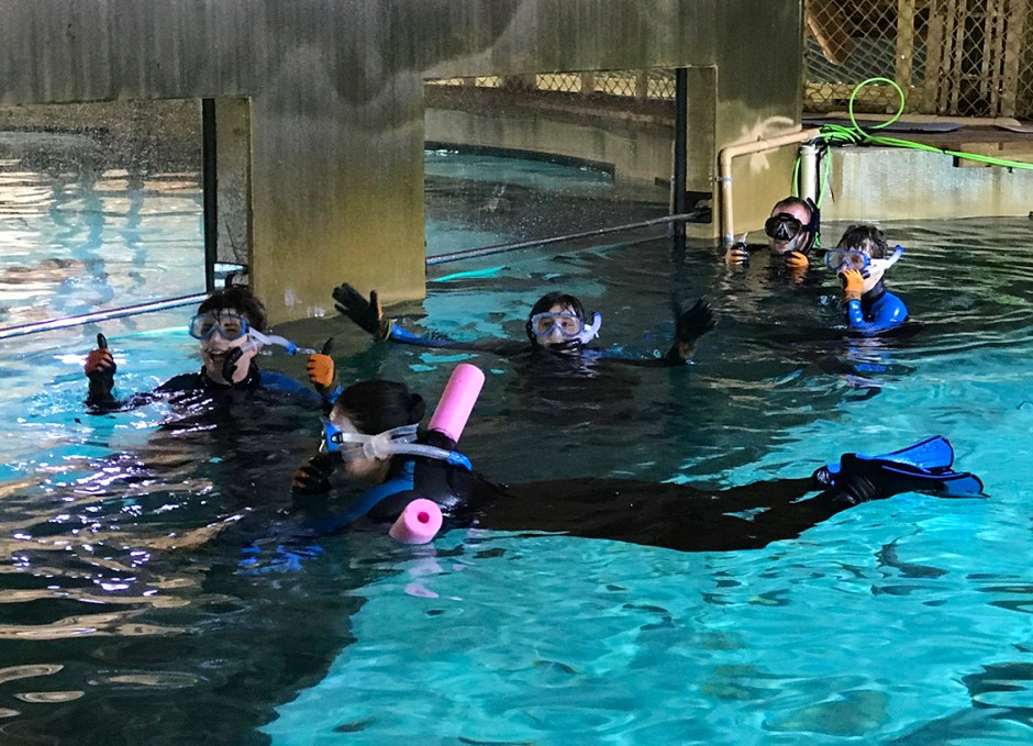 Aquarium Encounters girls in water