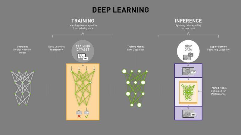 Deep Learning Training