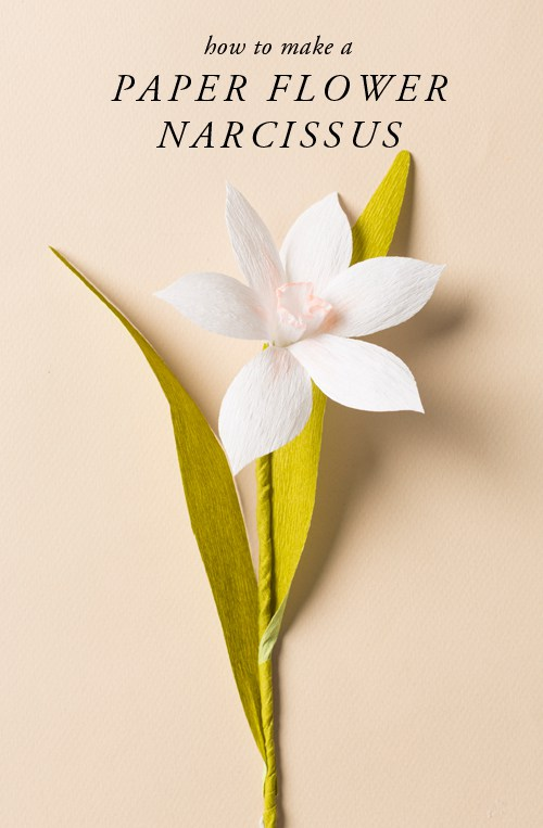 howtomakeapaperflowernarcissus  BigDIYIdeascom