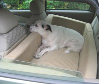 Dogs Beds For Your Car and Truck