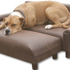 Big Dog Sofa Bed Inflatable Bubble Uk Furniture Pet Couch Sofas Couches