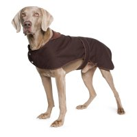 Big Dog Jacket