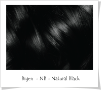 Bigenca Powder Hair Color Of Bigen Hair Dye Color Chart
