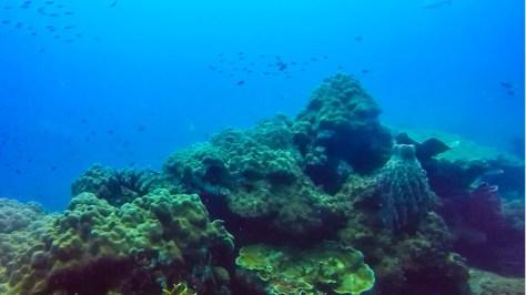 perhentian adaları