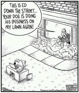this is ed down the street ... your dog is doing his business on my lawn again