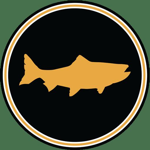 Big Fish Cider Icon - Site Icon - 512x512