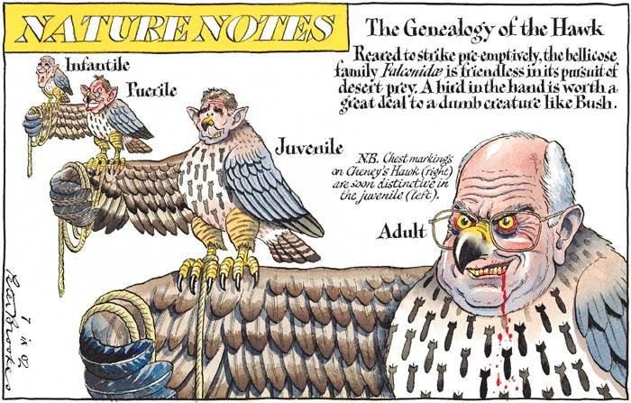 Iraq war chickenhawks, cartoon