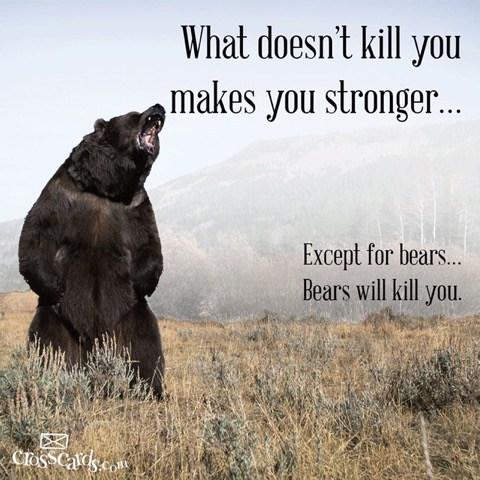Bears-Kill-you