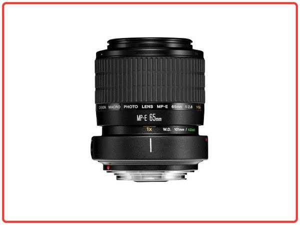Canon MP-E 65 mm f/2.8 1-5x Macro Photo