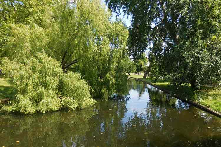 Regent's Park - one of 5 best parks in London