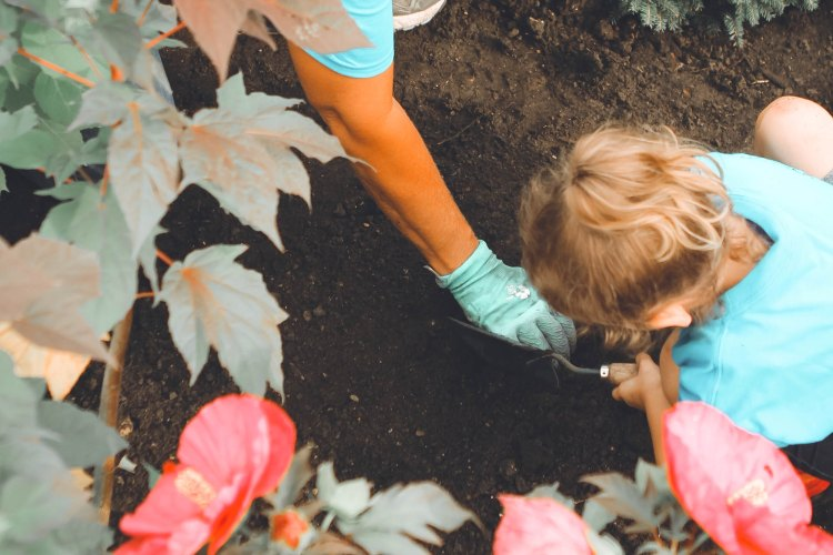 Child digging in ground