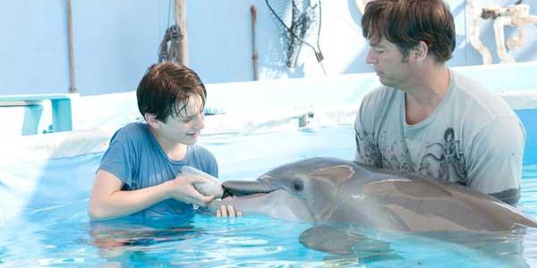 dolphin-tale-slide