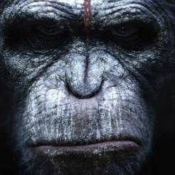 Dawn-Of-The-Apes-poster3