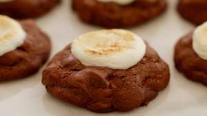 Hot Chocolate & Toasted Marshmallow Cookies