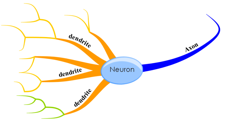 mind map template pdf