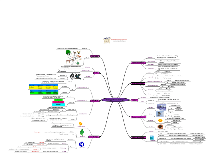Biology Notes: Ecology: MindGenius mind map template
