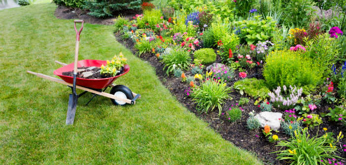 landscaping-supplies