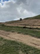 Andere Fahrer, andere Routen