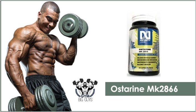 Ostarine MK 2866