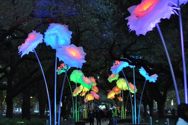 Zoo Lights Houston