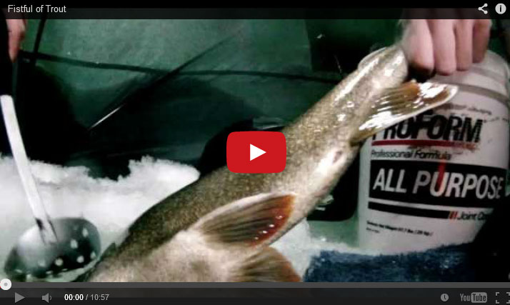 Fistful of Trout, Ice Fishing Lake Trout