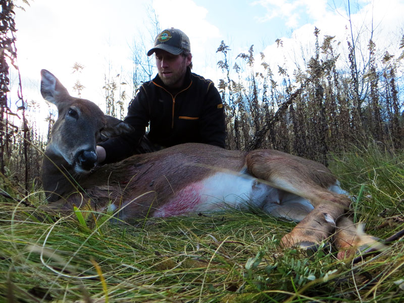bowhunting Minnesota whitetail deer