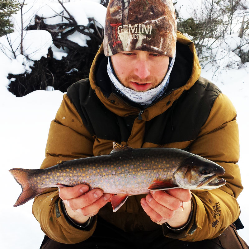 Ice Fishing Brook Trout Northern Minnesota