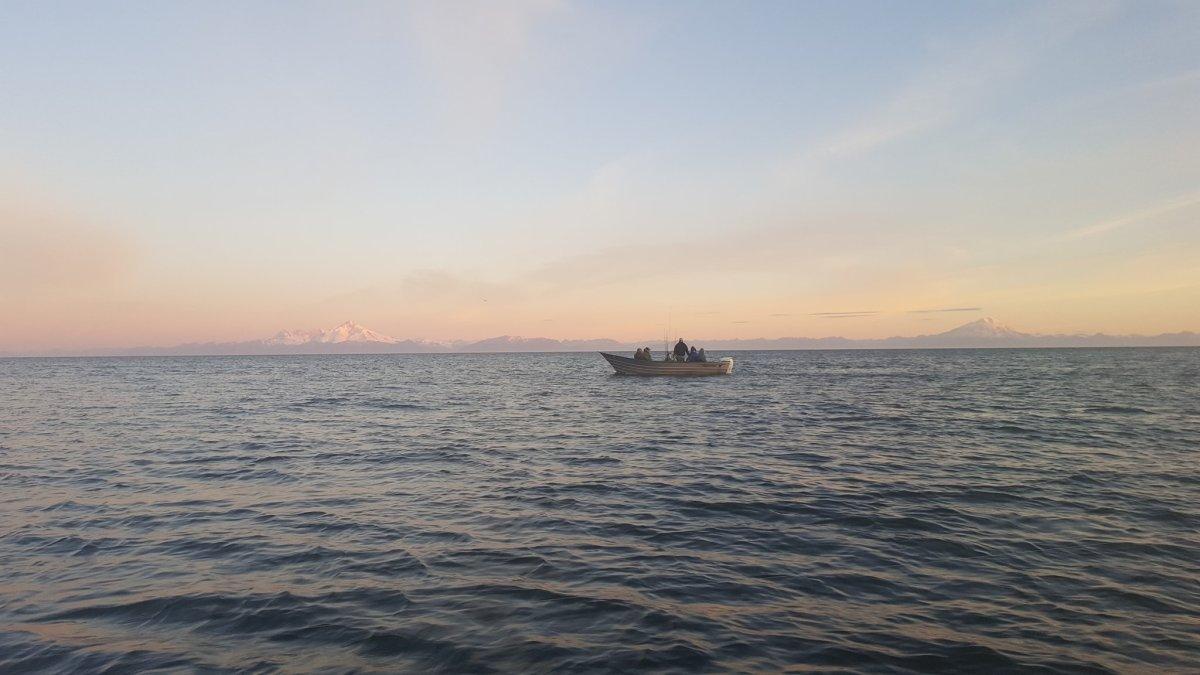 Halibut Fishing Lower Cook Inlet Alaska