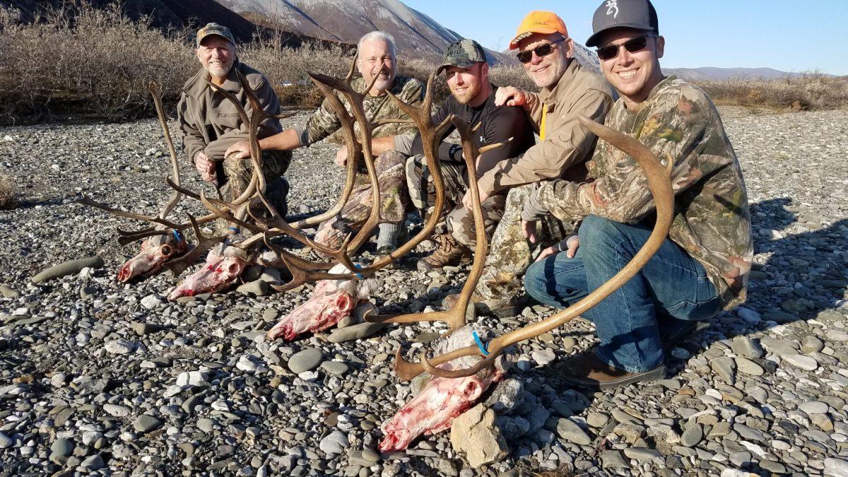 Caribou Hunting in Alaska