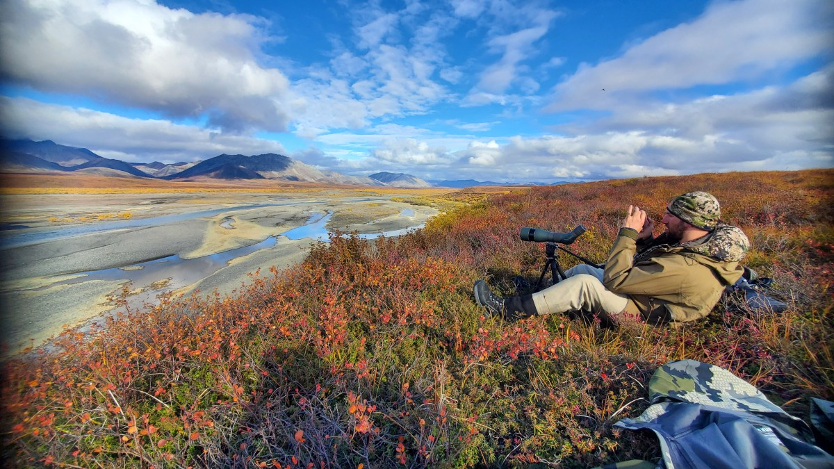 Kyle sitting on the tundra among blueberries glassing for Grizzly Bears in Arctic Alaska looking out over the river valley and gravel bars.