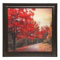 "26"" x 26"" Nature Framed Wall Art"