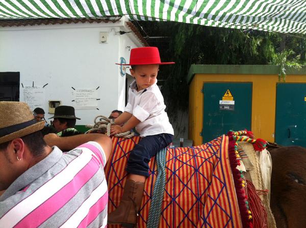 Feria de la Mula Arenas
