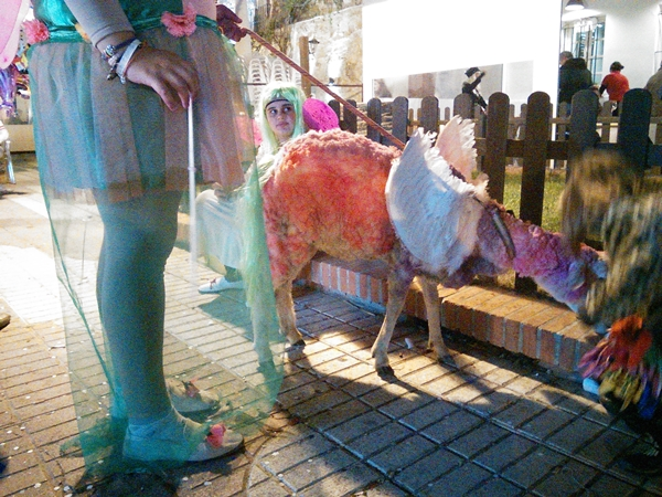 tarifa-carneval-sheep