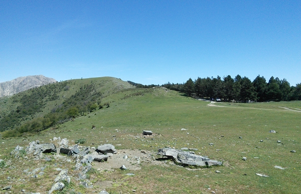 La-Maroma-grassy-plains