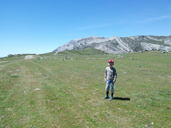 Sedella-Malaga-grassy-meadows