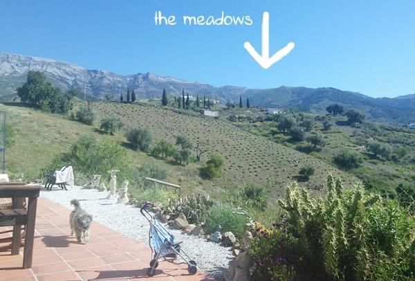 Sedella-grassy-meadows