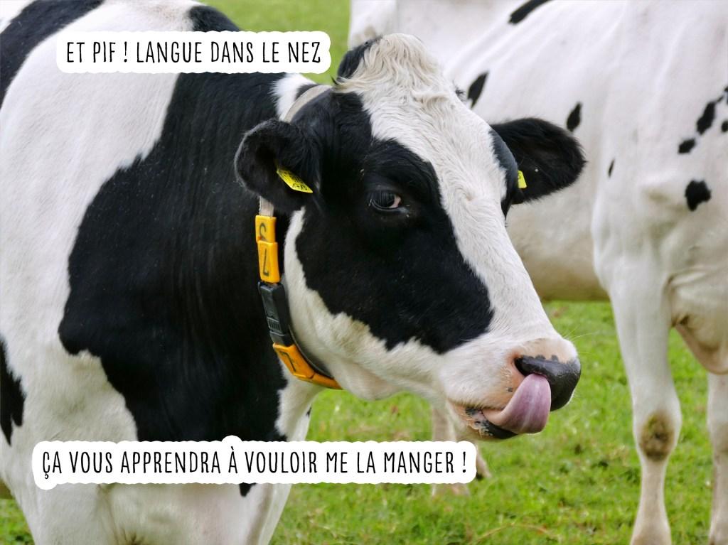 vache langue