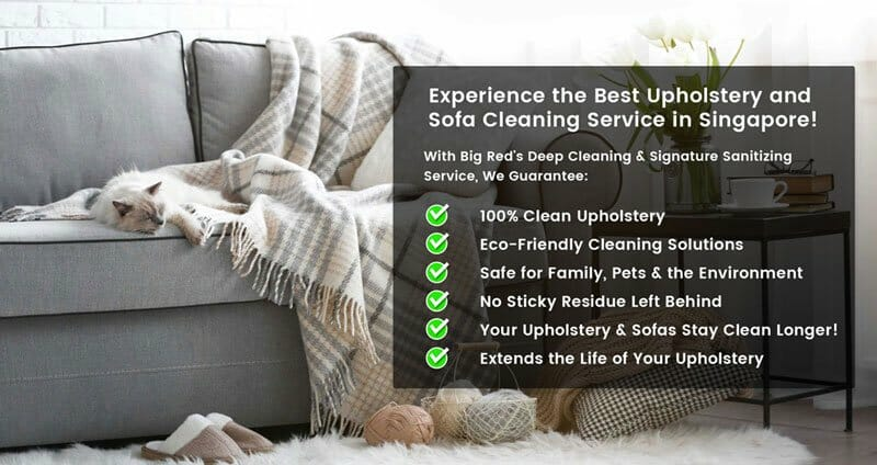 sofa upholstery singapore arhaus reviews cleaning services big red carpet cleaners experience the best by
