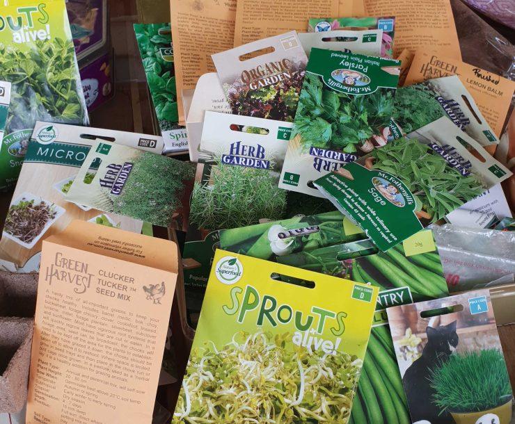 Various herb seeds