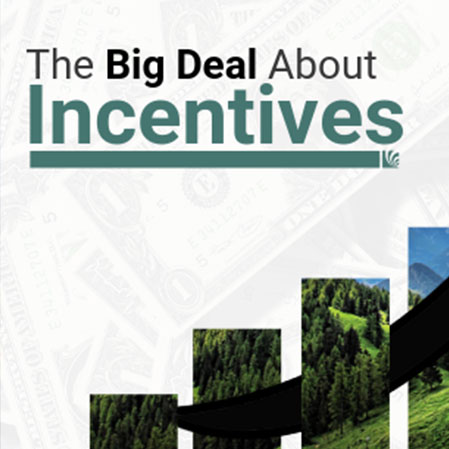 Benefits of Incentive Programs for Businesses