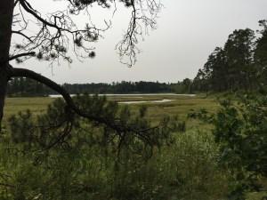 Bohall Lake