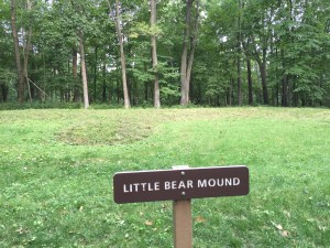 We're thinking this is the bear-shaped mound