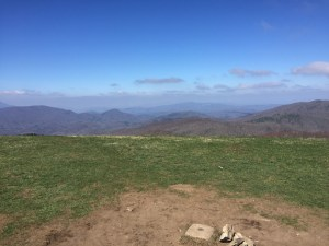 View from Max Patch Bald