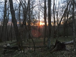 Sunset at Clyde Smith Shelter, mile 368.3