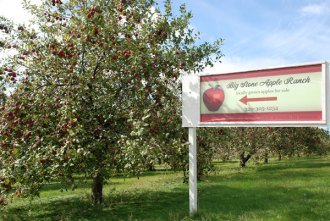 Big Stone Apple Ranch entrance sign