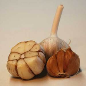 German Red hard neck garlic seed bulb - laterally cut