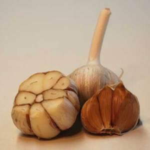 German Red hard neck garlic seed bulb - laterally cut