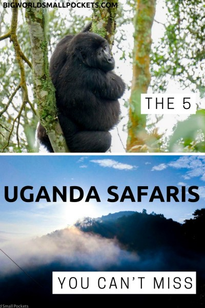 The 5 Uganda Safaris You Can't Miss - Big World Small Pockets