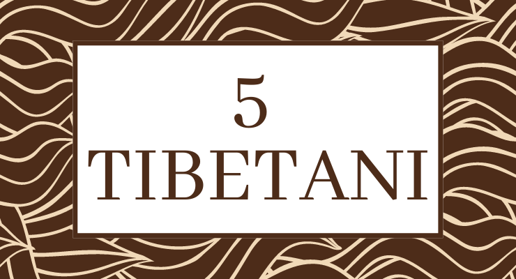 I 5 TIbetani Bija Casalpalocco