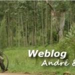 cropped-Weblog_banner_logo.jpg